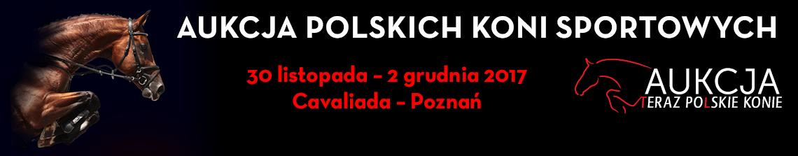 Teraz Polskie Konie