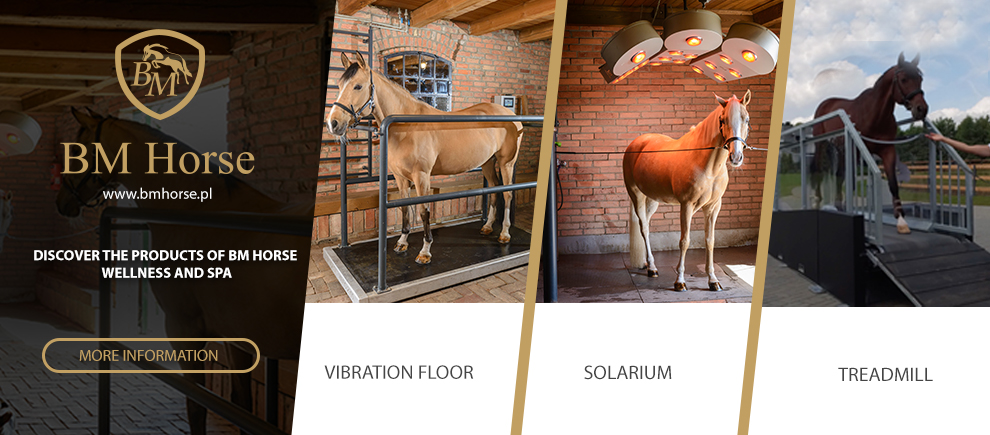 BM HORSE - Produkty Spa i Wellnes z innowacyjnymi rozwiązaniami