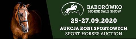 Baborówko Horse Sale Show 2020