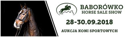 Aukcja Koni Sportowych - Baborówko