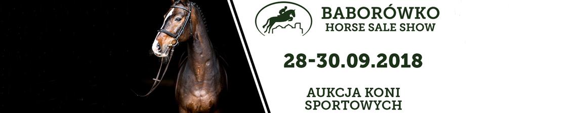 Aukcja Koni Sportowych - Baborówko 2018