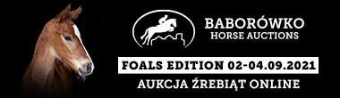 Baborówko Horse Sale Show 2021
